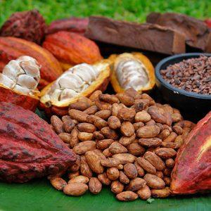 cacao profumo